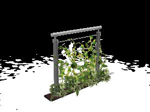 barriere-végétale-kolo