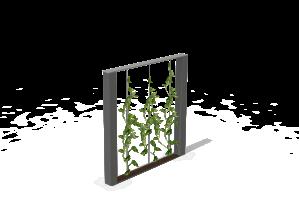 CU-BA-végétale-v2-2 kubic (1)