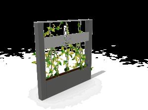 CU-BA-végétale-v2-2 kubic (2)